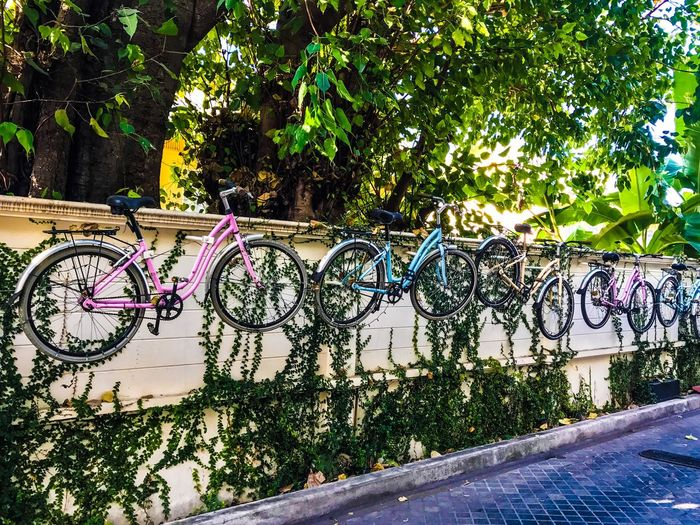 Bicycles of