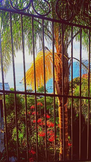 Buzios Relax Paradise Nature