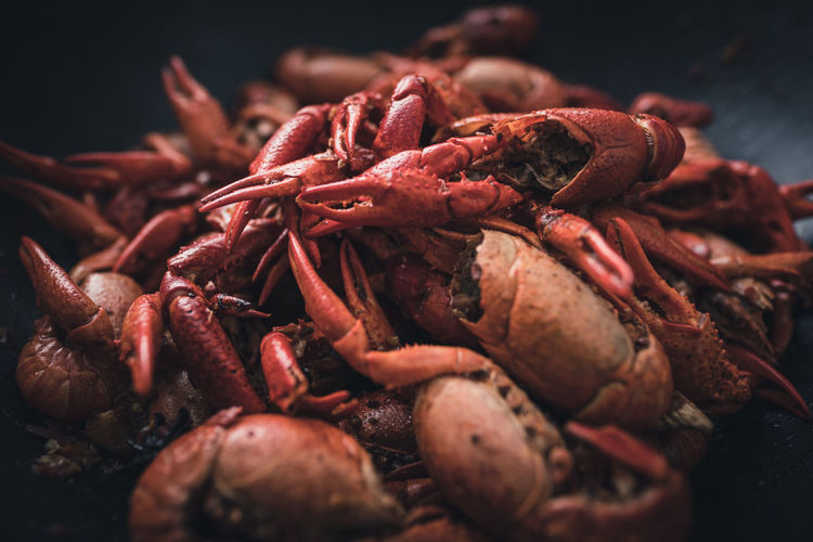 Close up of pile of cooked crayfish in a pot Crustacean Seafood Sea Red No People Prawn Food Sea Life Close-up UnderSea Outdoors Nature Day Crayfish Cooking Cuisine EyeEmNewHere The Week On EyeEm Food And Drink