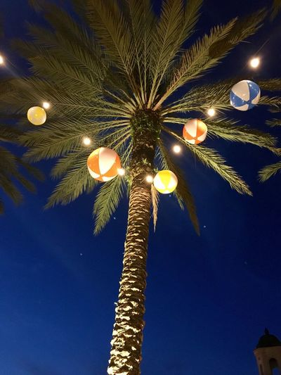 Illuminated Low Angle View Lighting Equipment Night Street Light No People Moon Electricity  Light Bulb Outdoors Sky Close-up