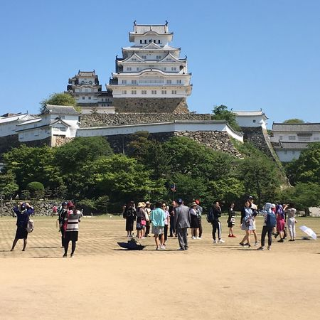 Himeji Castle Adult Architecture Building Exterior Built Structure Castle Clear Sky Day Himeji Castle Japan Japanese Culture Large Group Of People Lifestyles Men Outdoors People Place Of Worship Real People Sky Sunlight Tourism Travel Destinations Tree Women