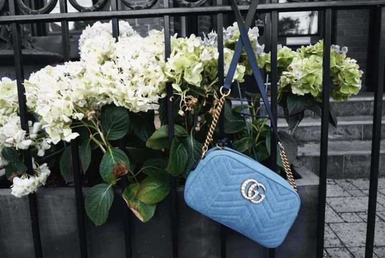 Gucci Japan exclusive💕 Denim made in Japan and sewn in Italy;) Flower Fashion GUCCI Lifestyles Photo Photography Toronto Torontophotographer Japan