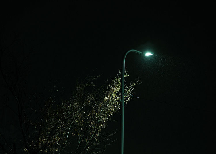 Low angle view of illuminated tree against sky at night