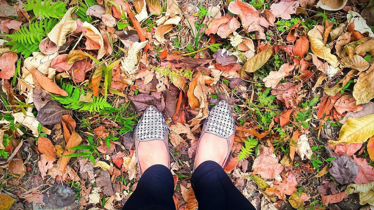 autumn, leaf, change, real people, low section, leaves, human leg, nature, standing, high angle view, day, outdoors, shoe, one person, lifestyles, human body part, fallen, women, beauty in nature, adult, people