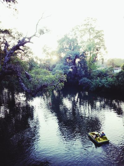 Water Nature Day Outdoors River Tree Kayak People Sky Real People Beauty In Nature Nautical Vessel Oar One Person Adult Paddleboarding Perspectives On Nature EyeEmNewHere Be. Ready.