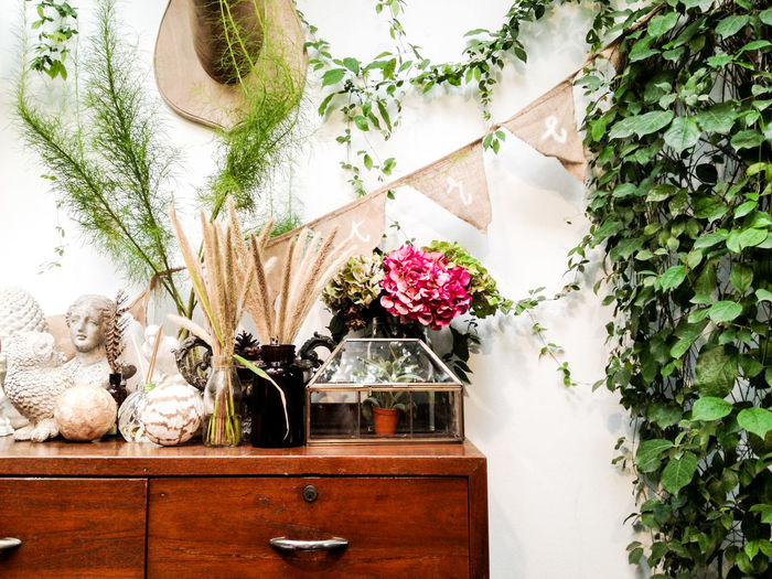 Plant Flower Flowering Plant Nature Decoration Potted Plant No People Vulnerability  Growth Freshness Beauty In Nature Fragility Indoors  Vase Day White Color Hanging Wall - Building Feature Architecture Flower Head Flower Pot Flower Arrangement Bouquet