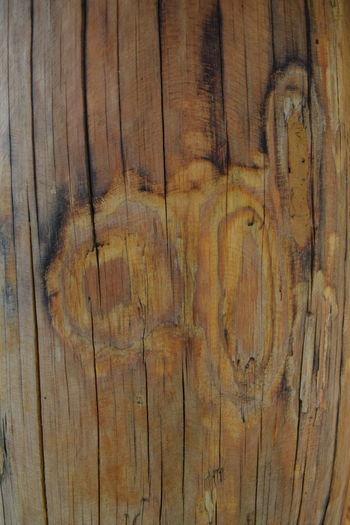 Wood Wooden Texture พื่นผิวพนัง ลายไม้ ลาย
