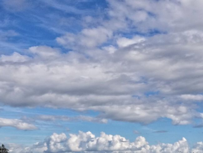 https://youtu.be/WeYsTmIzjkw 😁😁😁Because😁😁😁 Cloud - Sky Sky Blue Nature Tranquility Stratocumulus Low Angle View No People Cloudscape Day Scenics Cirrus Outdoors Heaven Sky Only Afrolicious And I Know Why 😚 Because I Got High Beauty In Nature Artistic Expression I Inspire You😂👍 Lets Just Roll Wi Dat😂😂 NZ Summer Music Makes Me Feel So Good