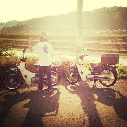 Maizuru Honda Cab Motorcycles