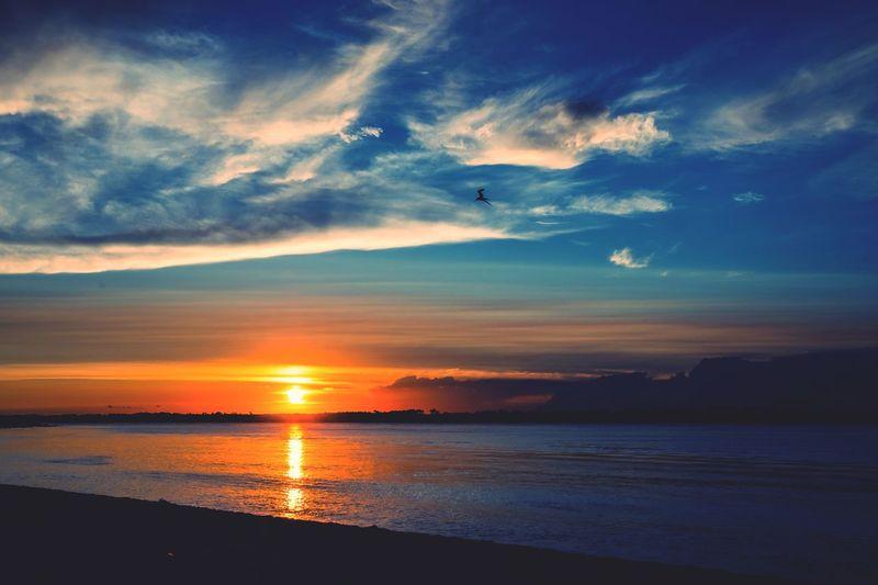 Sunset_captures Beach Sunset Florida Skies Sunset Lovers Sunset_collection Beach Photography EyeEmBestPics EyeEm EyeEm Nature Lover EyeEm Best Shots Water Sky Beauty In Nature Sea Scenics - Nature Sunset Cloud - Sky Tranquil Scene Tranquility Beach Nature No People Reflection Outdoors