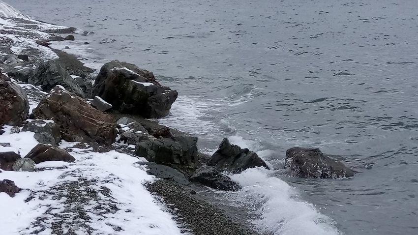 прилив отлив бухта авача