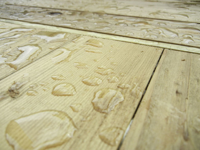 Wood deck flooring after a late summer rainfall. Backgrounds Brown Close-up Deck Detail Full Frame Lumber No People Porch Rain Rain Drops Selective Focus Still Life Textured  Water Beads On Spiderweb Wood Woodworking
