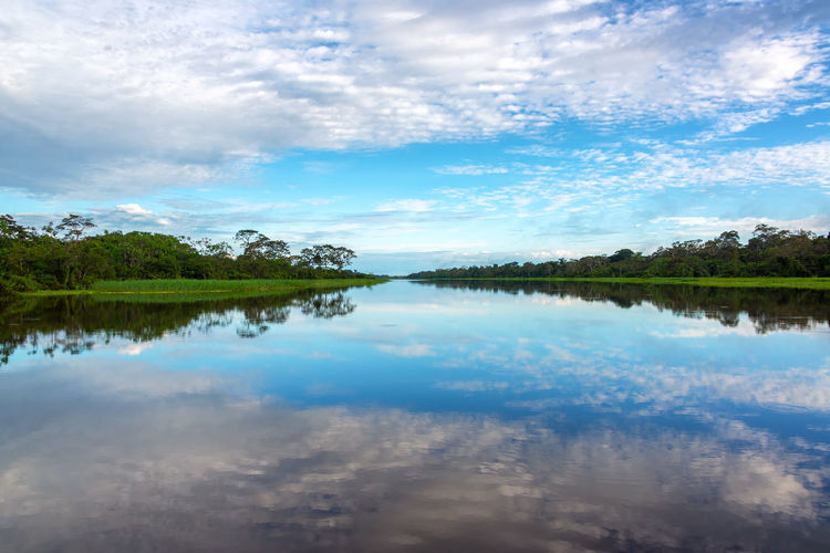 Beautiful sky reflected in a river in the Amazon rain forest near Iquitos, Peru Adventure Amazon Amazonas Amazonia Background Flood Flooded Forest Green Iquitos  Iquitos, Perú Jungle Lake Nature Park Peru Rainforest Reflection River South America Travel Tree Tropical Vacation Vines