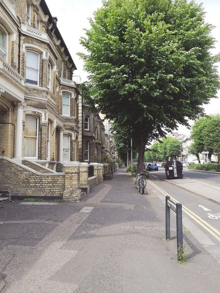 British Street Houses Green Tree Architecture Building Exterior Sky Built Structure Cobblestone Cobbled Empty Road Pavement Treelined Road Marking