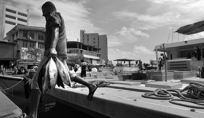 Fisherman Fish Dhoni Boat City Men Business Finance And Industry Occupation Arts Culture And Entertainment Sky Building Exterior Architecture Cloud - Sky Office Building Cityscape