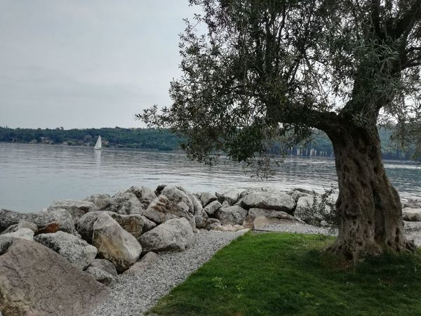 Water Nature Outdoors Tranquil Scene Tranquility Day Scenics Beauty In Nature Sky Italy Lake Tree No People Love Building Exterior Ancient History Life Tradition Morning Nature Art Tranquility Cloud - Sky Peace View