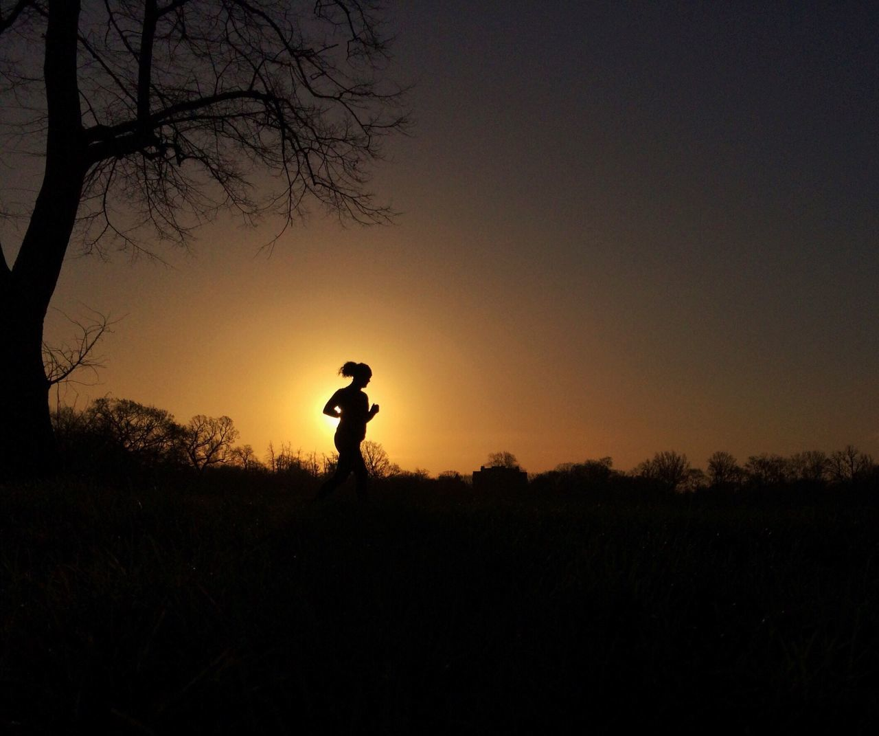 silhouette, sunset, nature, clear sky, field, tree, tranquil scene, beauty in nature, outdoors, real people, scenics, landscape, tranquility, one person, men, standing, sky, full length, day, people