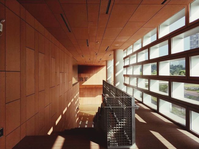 Student Life Shadow Showcase: December Library Architecture Indoors  Sunlight ☀