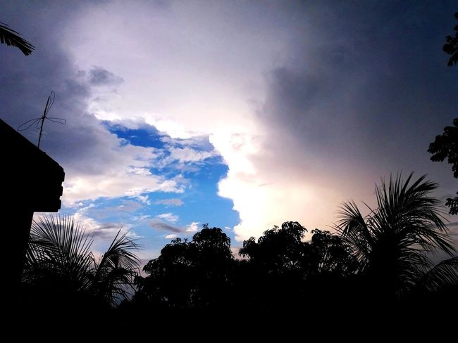 beautiful scenic beauty of nature Clouds And Sky Blue Sky Dusktimeshot Tree Cloud - Sky No People Sky Nature