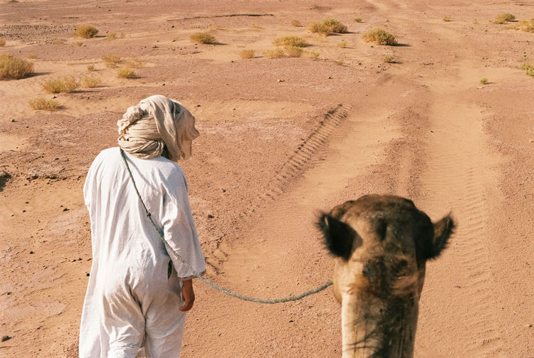 Personal perspective of camel ride being led by a man