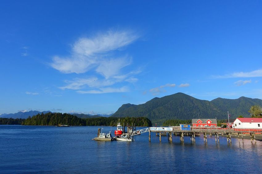 a small town by the sea Toffino Vancouver Island Canada Road Tripping Abventure Exploring Travel Sunny Day Harbour Nature Sea Mountain