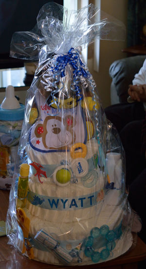 Baby Baby Boy Baby Shower Bib Cake Detail Diapers Full Frame Gift Indoors  Pacifier Party Preparation  Shower Wrapped