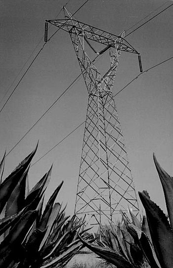 Power Lines Humberto Ricalde Don't Be Square