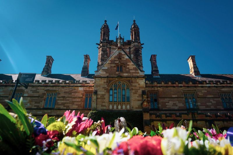 Most beautiful university building I've ever seen in Australia, the University of Sydney. University University Of Sydney Sydney Australia Flower Flowering Plant Built Structure Architecture Plant Building Exterior Nature Sky Building Low Angle View Clear Sky Outdoors