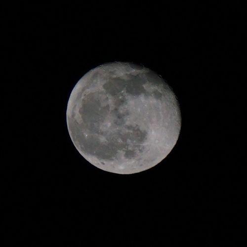 満月すぎちゃったけど夜空撮影日和\(>_<)/ ----------- 火, 2014/03/18 十八夜, 月齢17日間, 96%が見える, 387,889.37kmの距離がある