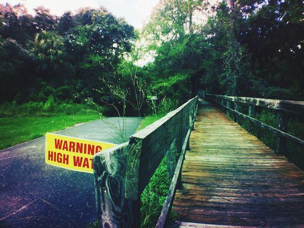 Nature On Your Doorstep small detour on bike due to rain Biking Trail Ride Ankuriview Nature