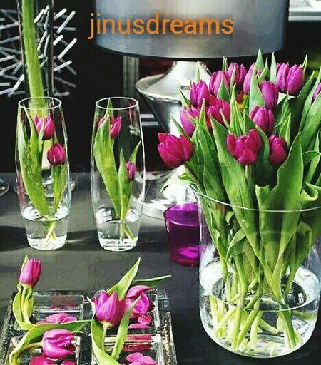 EyeEm Best Shots Flower Collection Flowerslovers Good Night N Sweet Dream Gdnyt✨💕 Flowers