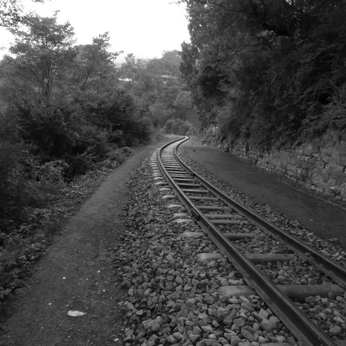 sometimes all you need is a long road to travel and the destination doesnt matter Travel Discovery EyeEm EyeEm Best Shots EyeEm Nature Lover Wilderness Monochrome OpenEdit Leica D-lux Typ109