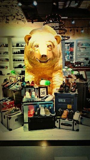 Nah! beruang kutub....terkezut bila first time neggok...sellu neggok color putih ni color gold...nasib baek bukan gold betul kalau x abis la... KLIA2