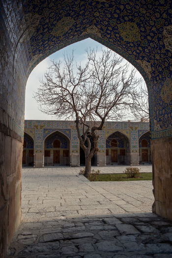 View through an archway to one of the inner squares of the Sheikh Lotfollah Mosque, Isfahan, Iran with a bare winter tree in the middle. Place Of Worship Arch Arched Architecture Bare Tree Building Building Exterior Built Structure Courtyard  Day Direction Entrance Esfahan History Isfahan Nature No People Old Outdoors Plant Sky The Past The Way Forward Tree Wall