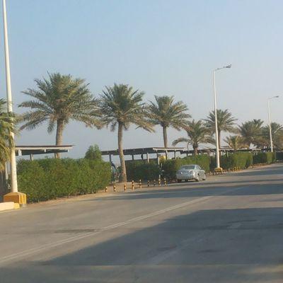 تصويري  القرية  ارامكو البحر