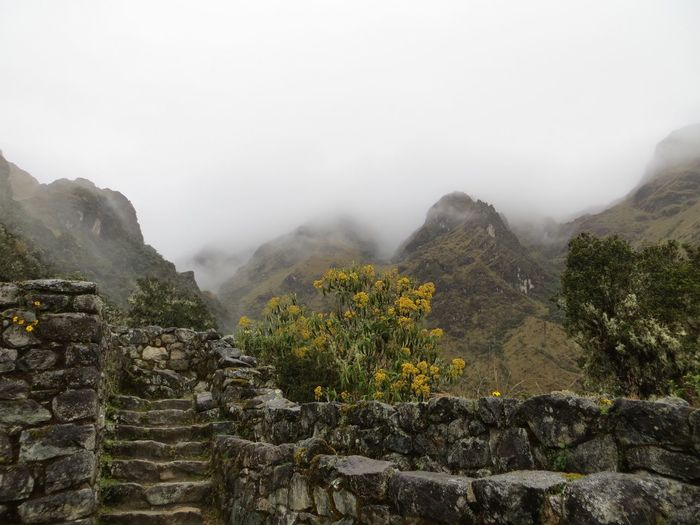 Mountain Fog Nature Beauty In Nature Scenics Tranquility Day Landscape No People Outdoors Sky Inca Ruins Inca Trail Travel Destinations Tranquil Scene Mist Foggy Peru