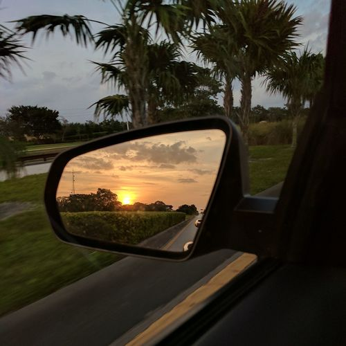 EyeEmNewHere Tree Mirror Car Sunset Reflection Side-view Mirror Vehicle Mirror Cloud - Sky No People Sky Day Nature Outdoors Sommergefühle