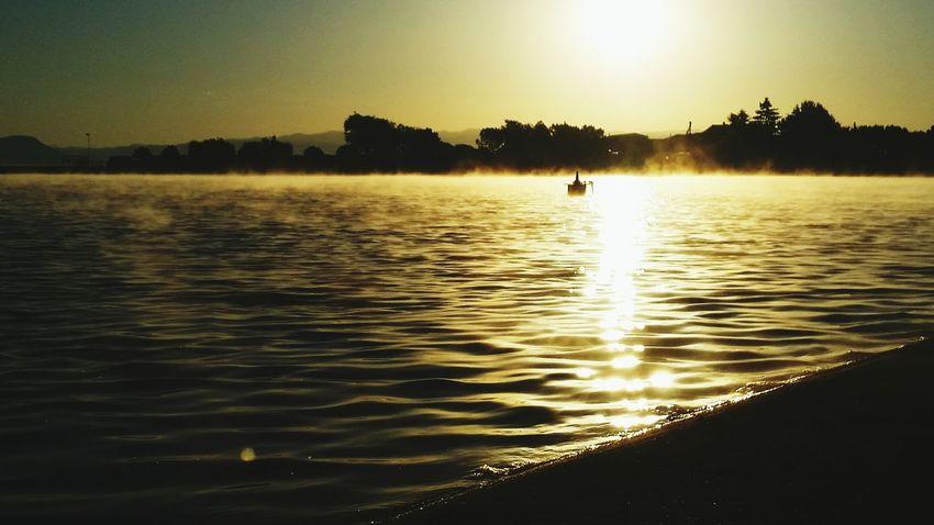 Parc De L'Agulla  Sunset_collection Morning Light Landscape_Collection