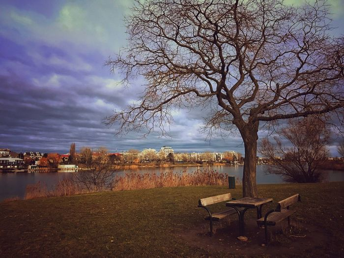 Empty bench by bare tree against sky in city