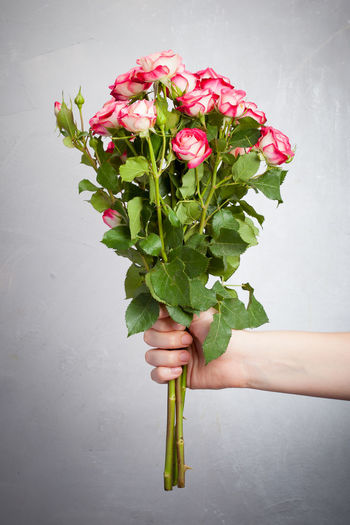 Roses in front of a grey background Beauty In Nature Bouquet Close-up Day Flower Flower Head Fragility Freshness Grey Background Holding Human Body Part Human Hand Nature One Person Studio Shot
