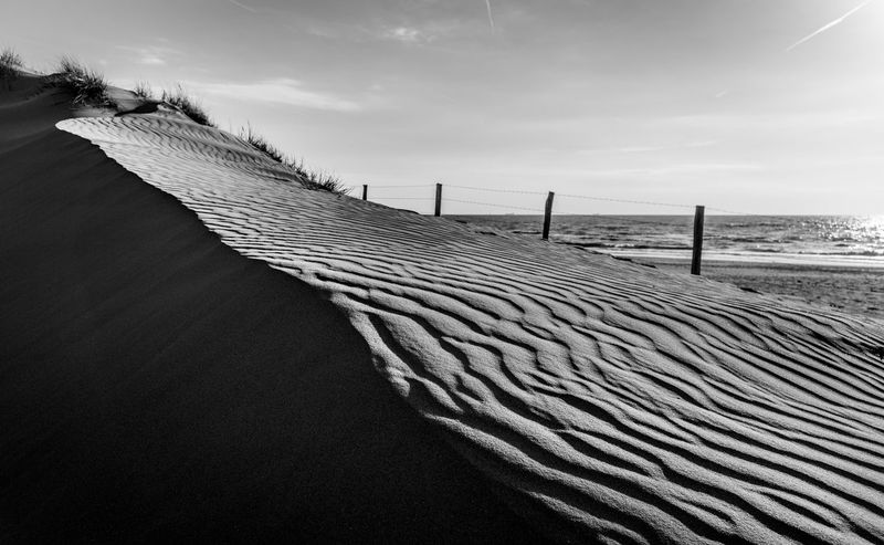 Seen in Nordwijk, NL Dunes Netherlands B&w Beach Beauty In Nature Black And White Contrast Day Holland Horizon Over Water Nature No People Nordwijk Northsea Northsea Coast Outdoors Sand Sand Dune Sea Sky Sundown Tranquility Water Waves