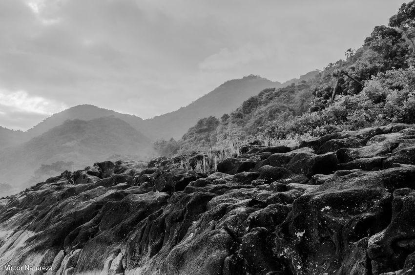Mountain Nature Scenics Mountain Range Vitaonatureza Victornatureza Paz Artefotografia Beach Textured  Textured  Documentaryphotography Documentary Fotodocumental Paraty Brazil Travel Destinations Nature Brasil Fotografiaautoral