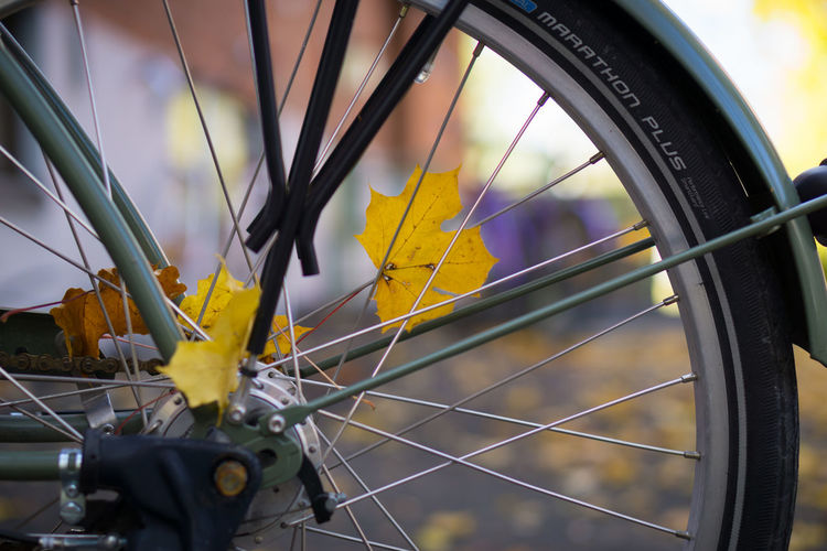 Close-up of yellow bicycle wheel