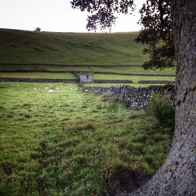 Derbyshire Castleton Ig_britishisles Instagramer iphoneonlynaturamenteloves_landscapeloves_united_kingdomcapturingbritainhidden_ukuk_potdcapturingbritain_ruralrsa_nature