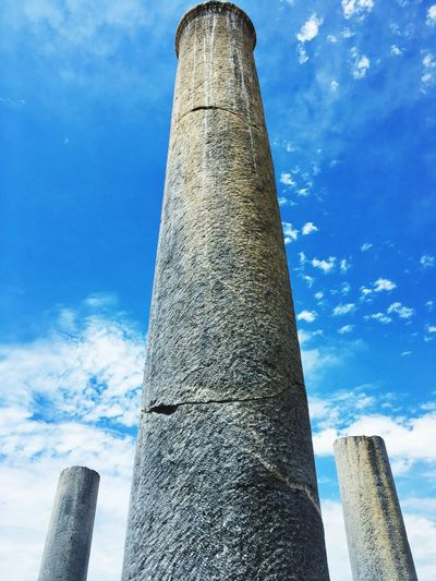 Columns Sky Low Angle View Tree Trunk Day Architectural Column Outdoors Blue Cloud - Sky No People Sunlight Built Structure Tree Nature Close-up The Architect - 2017 EyeEm Awards