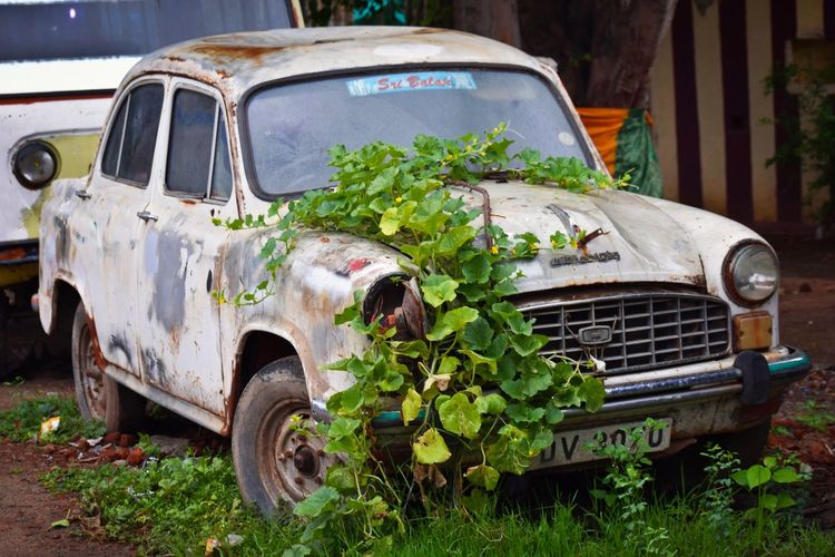 My Click Old Car Car Damaged Bad Condition Rusty Transportation Old Ruin No People Nikon D3300 Street Photography