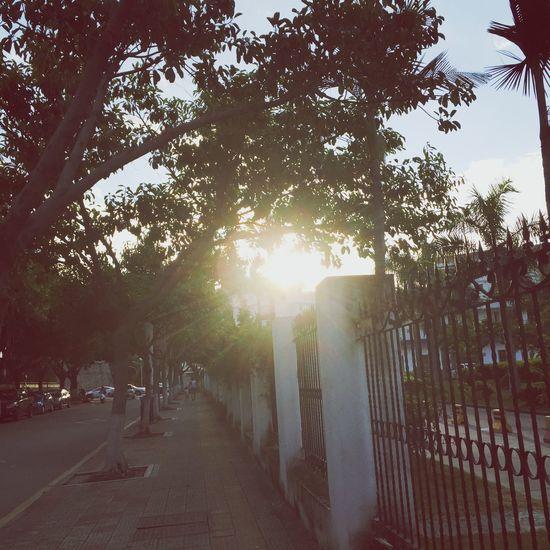 The sunset.