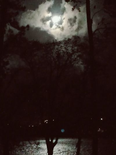 Been There. Outdoors Moonlight Silhouette