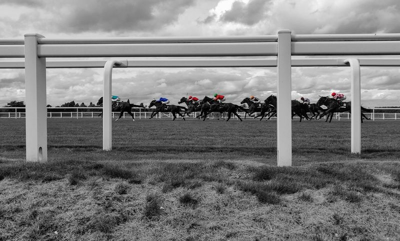 horse racing Photowalktheworld Horse Racing Ascot Racecourse Horse Races Jockeys Color Pop Beautiful Clouds Black And White EyeEm Selects Sky Cloud - Sky Goal Post Jockey Bridle Horseback Riding Working Animal Horse Saddle