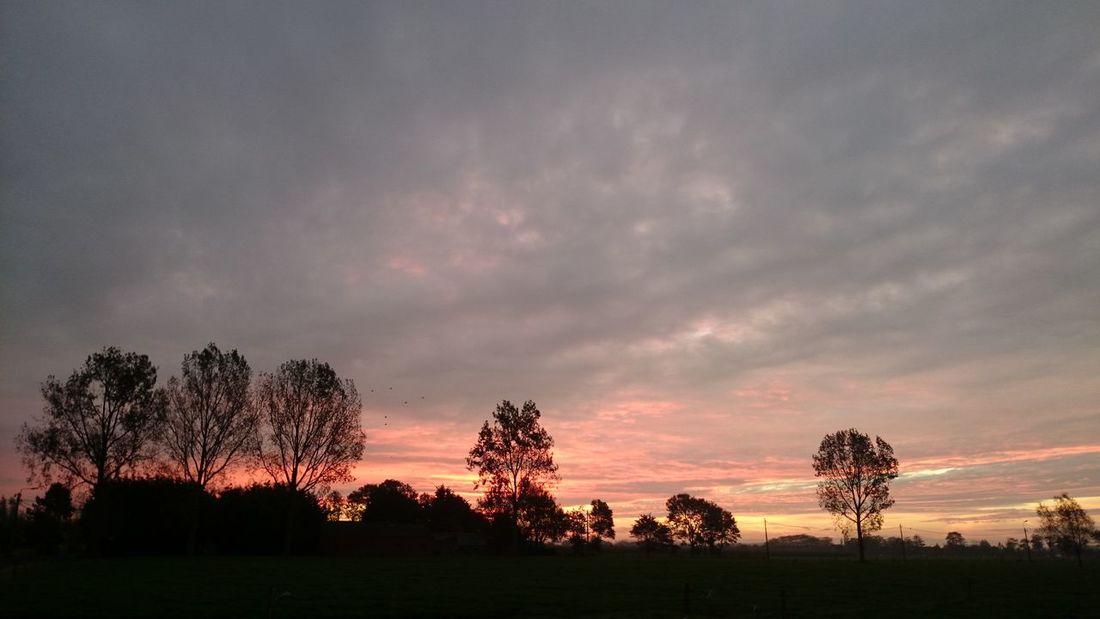 Skyporn Sunrise Landscape Beautiful Colours....